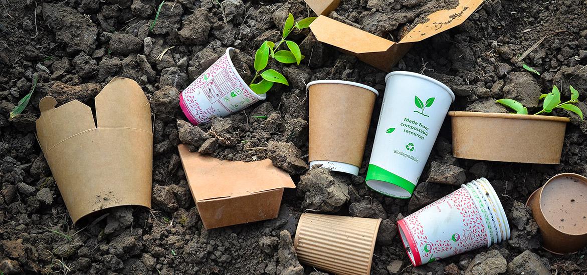 Por qué compostables
